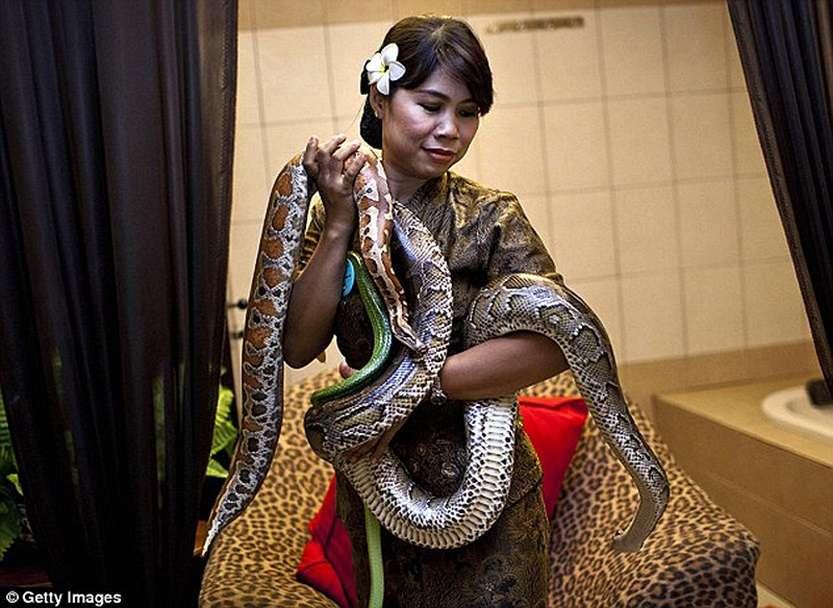 106612970_large_snakemassage08