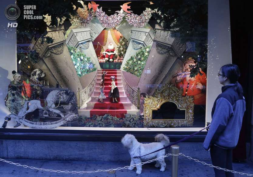 Fashion Holiday Windows