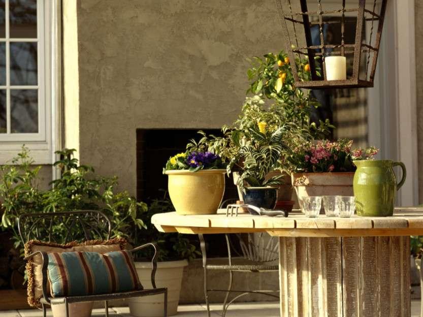 Что приносят растения в дом по фен-шую?