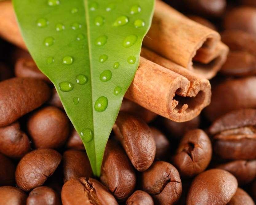 Ученые установили, что кофе поможет в лечении смертельных болезней