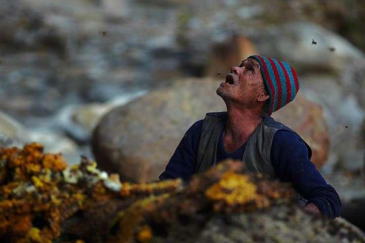 Honey hunter, Nepal